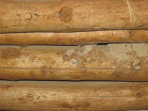 Roof Beams at Pueblo Bonito Showing Core Samples Taken for Dating