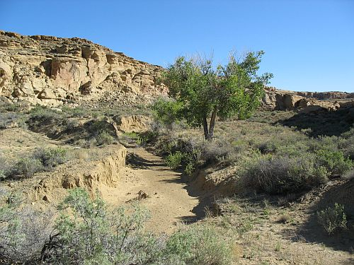 Tributary Drainage in Chaco Canyon