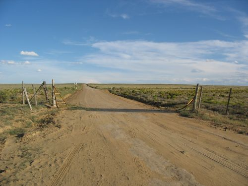 Cattleguard on North Road into Chaco